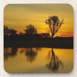 Coucher du soleil, l'eau jaune Billabong Sous-bocks