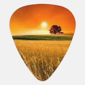 Coucher du soleil rouge sang onglet de guitare
