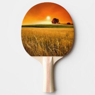Coucher du soleil rouge sang raquette de ping pong