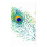 Couleur d'arrière - plan de la plume de paon de cartes de visite personnelles