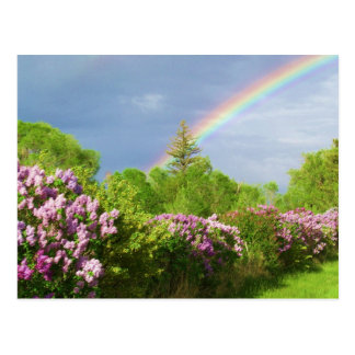 couleurs dans la carte de nature