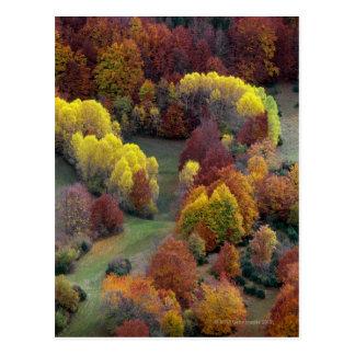 Couleurs d'automne carte postale