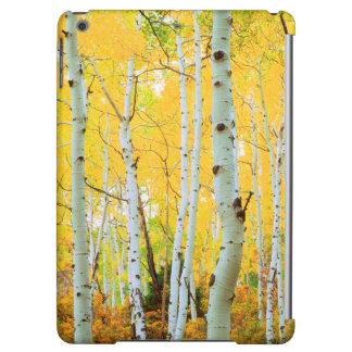 Couleurs de chute des arbres 1 d'Aspen