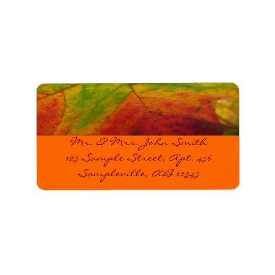 Couleurs de la photographie de nature d'automne de étiquette d'adresse