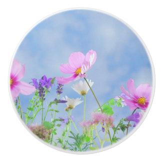 Couleurs sensibles de jolies fleurs