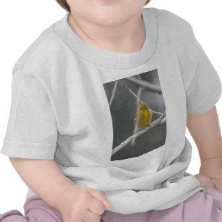 Coup d'oeil de nature d'oiseau de fauvette de pin  t-shirts