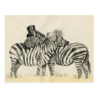 Couples de M. et de Mme Zebra Fancy Carte Postale