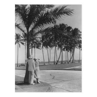 Couples se tenant à la vue arrière B&W de palmier Carte Postale