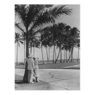 Couples se tenant sous l'arbre carte postale