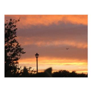 Courrier et oiseau de lampe cartes postales