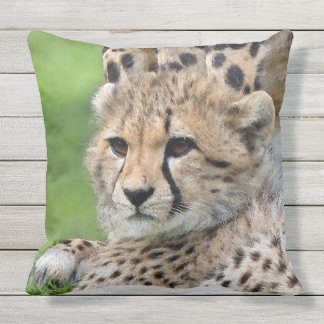 Coussin Aqua_Cheetah_20180101_by_JAMColors