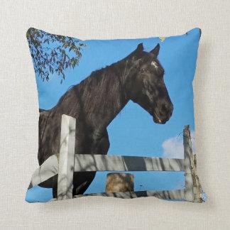 Coussin Beau cheval noir