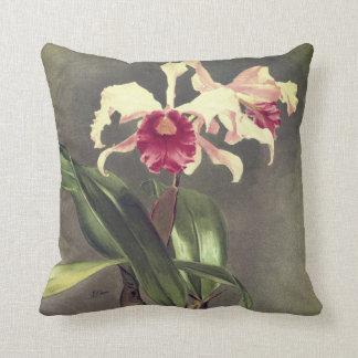 Coussin Carreau d'orchidée de Cattleya Hybrida Arnoldiana