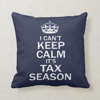 Coussin Comptable - saison d'impôts