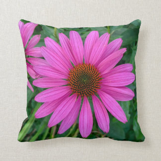 Coussin Coneflower pourpre
