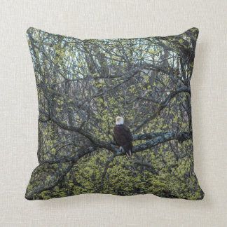 Coussin Conscience d'Eagle