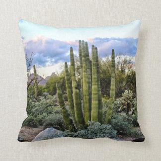 Coussin Coucher du soleil de Succulent de Scottsdale