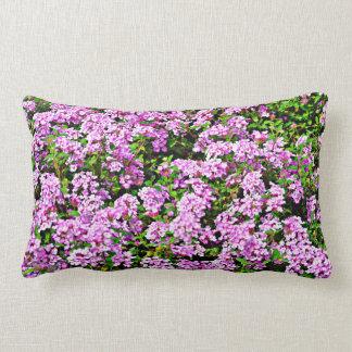 Coussin de coton de fleurs de pourpre