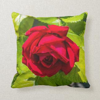 Coussin de jet de fin de rose rouge