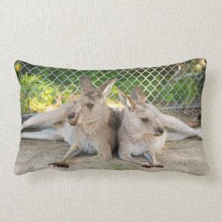 Coussin de kangourou
