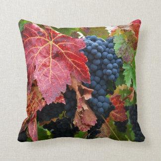 Coussin de récolte de raisin