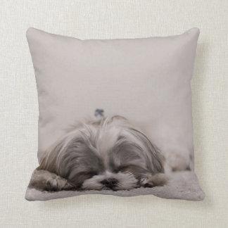 Coussin de tzu de sommeil Shih, chien de sommeil