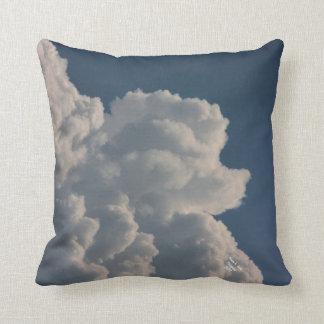 Coussin décoratif de caniche de nuage