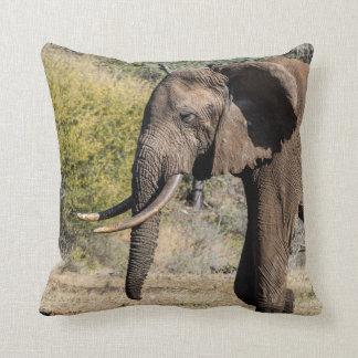 Coussin Éléphant avec de longues défenses