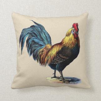 Coussin Image colorée de cru de poulet de pays de coq