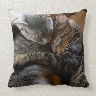 Coussin mignon d'accent de meilleurs amis de chats