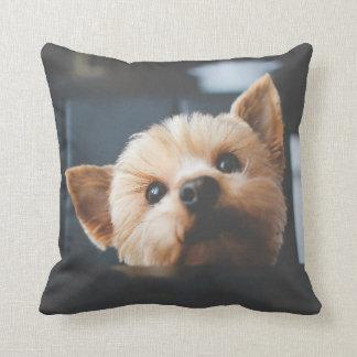 Coussin mignon de chiot de Yorkshire Terrier