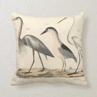Coussin Oiseaux aquatiques