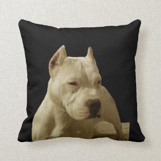 Coussin Pitbull blanc Terrier