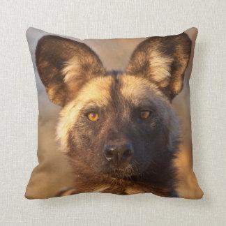 Coussin Portrait de chien sauvage