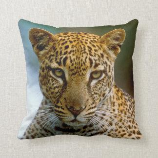 Coussin Portrait de léopard