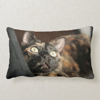Coussin Rectangle cat tortie pillow