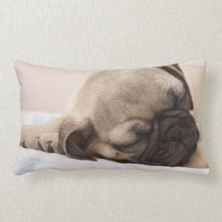 Coussin Rectangle Chiot dormant solidement