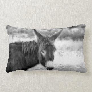 Coussin Rectangle Farine d'avoine le carreau d'âne