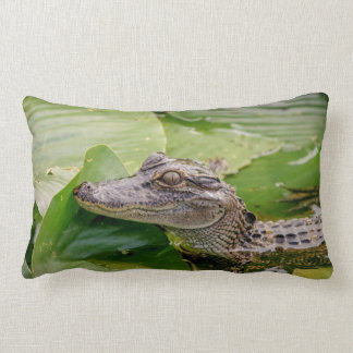 Coussin Rectangle Jeune alligator