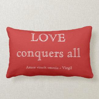 Coussin Rectangle L'amour conquiert tous
