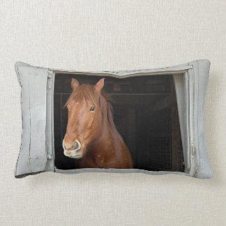 Coussin Rectangle Le cheval quart de châtaigne attendant pour être a