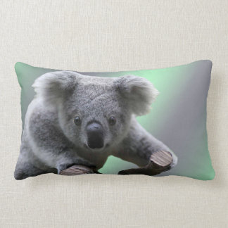 Coussin Rectangle Ours de koala
