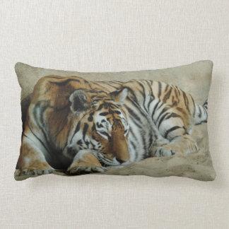 Coussin Rectangle Photo renversante de grand chat de tigre paresseux