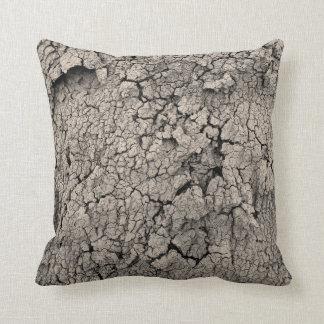 Coussin Texture criquée de saleté de cool de la terre