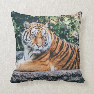 Coussin Tigre