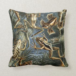 Coussin Variété d'Ernst Haeckel de grenouilles exotiques :