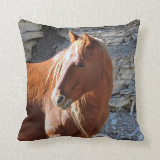 Coussin WildWind
