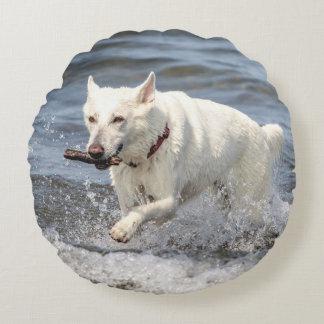 Coussins Ronds Allemand blanc Shepard sur le lac George