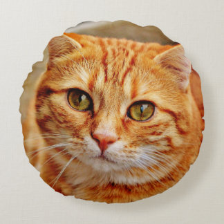Coussins Ronds Cute Orange Cat