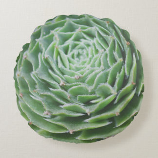 Coussins Ronds Photo succulente verte